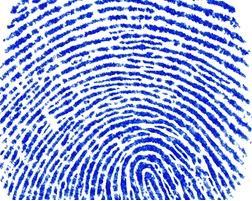 Biometric residence permit, UK Tier 1 PSW Visa,