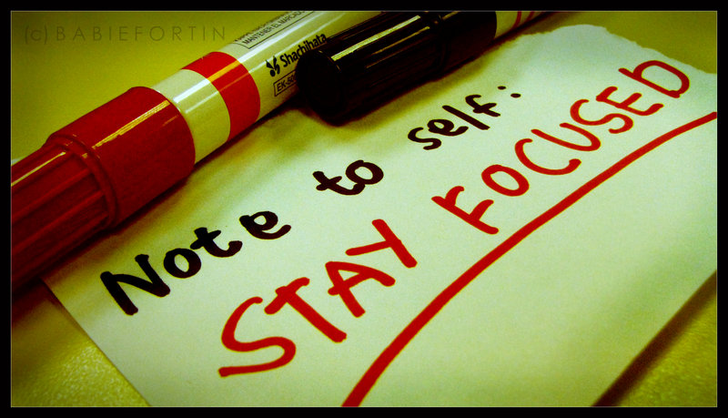 stay focused in job search
