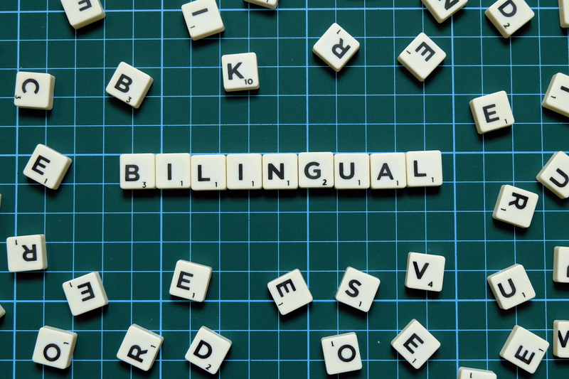 Bilingual word on green square mat background.
